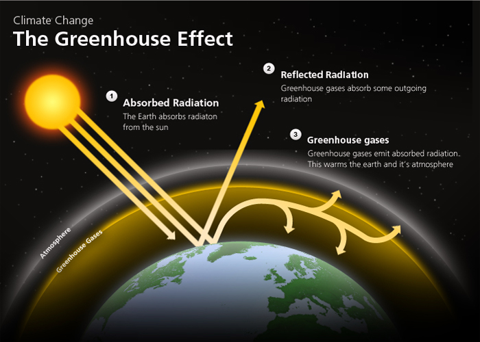 The greenhouse-effect